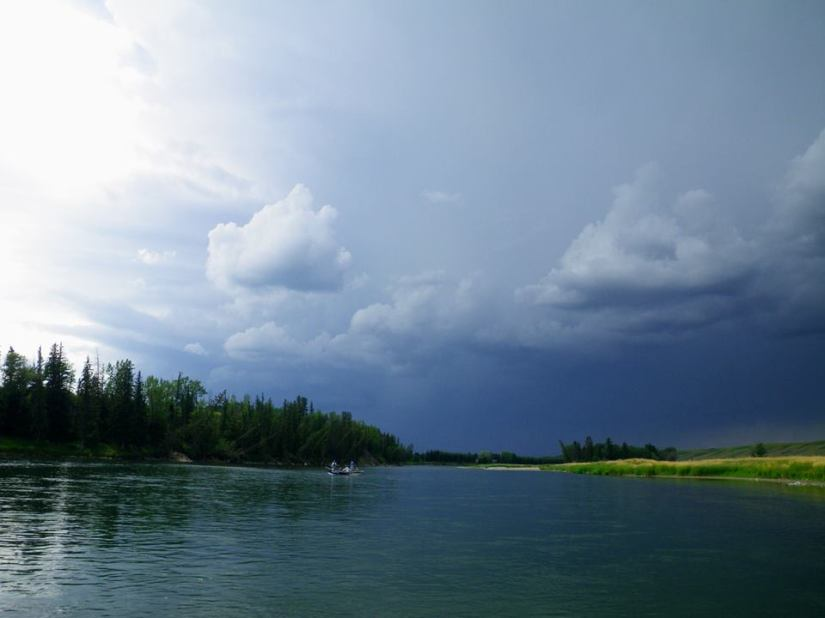 The Bow River Water Management & the Impact on the Fishery