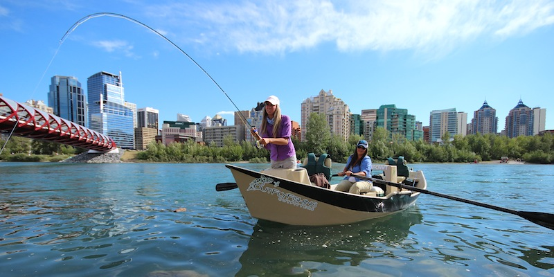 Bow River Water Management Report
