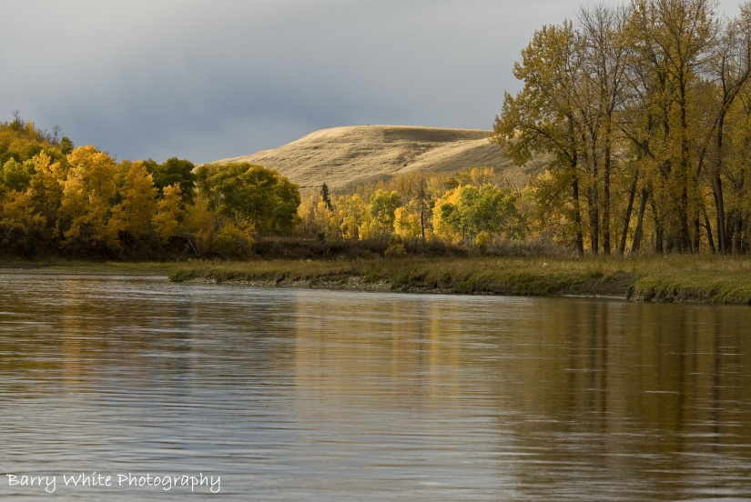 Bow River Water Management Policy – Letter to AEP Minister Shannon Phillips
